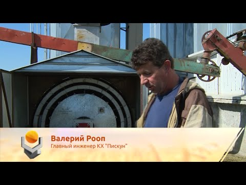 """Отзыв о зерносушилке в КХ """"Пискун"""""""