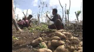 A documentary of ZDF German TV on the island of Kiriwina of the Trobriand Islands of Papua New Guinea, Original in German;...