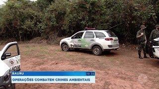 Semana do Meio Ambiente: polícia intensifica fiscalizações