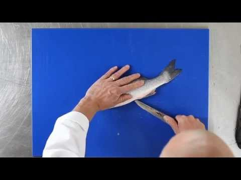 How To Fillet Sea Bass