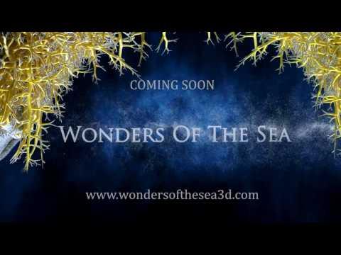 أهلا بكم في Wonders of the Sea 3D..شوارزنيجر مرشدكم في رحلة ثلاثية الأبعاد لأعماق المحيط