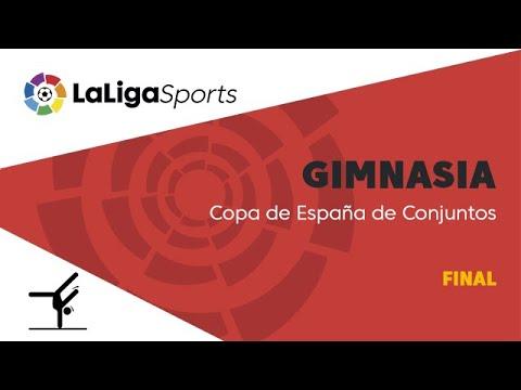 Copa de España de Conjuntos de Gimnasia Rítmica - Final