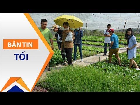 Thực hư con sốt rau hữu cơ trên thị trường | VTC1 - Thời lượng: 2 phút, 38 giây.