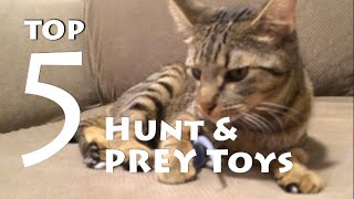 Top 5 Hunt & Prey Toys for Your Cat in 2016