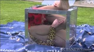 Elastic Woman Can Fit Into A Box