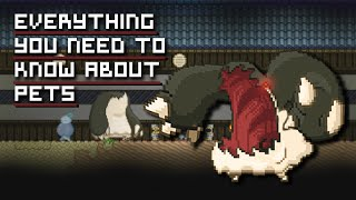 Thank you for watching! Starbound video based on the pet system within the game, such as capturing pets, buffing them & my...