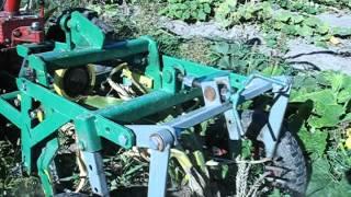 Мотоблок Мотор Сич. Картофеле копалка КГВ-400 копаем кукурузу...МБ Мотор Сич