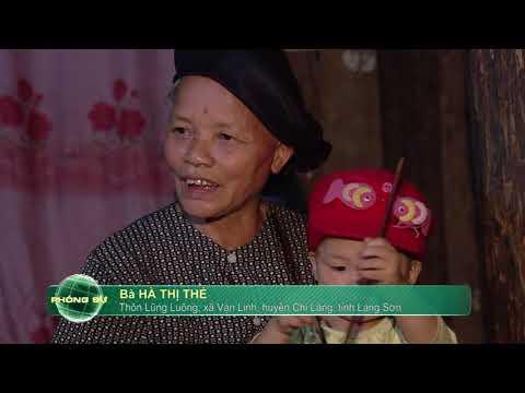 Tác phẩm đạt giải KK Giải báo chí Quốc gia năm 2016: Như hoa hướng dương