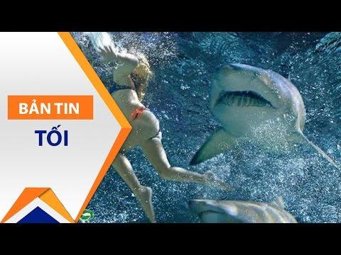 Tắm biển, thiếu nữ bị cá mập cắn chết | VTC1 - Thời lượng: 41 giây.