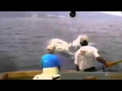 友人錄下男子海上釣魚 竟意外釣出龐然巨物將他拖入水中