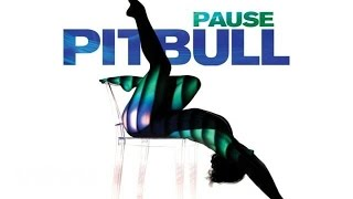 Pitbull - Pause (Audio)