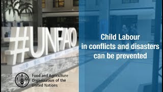 Preventing child labour in conflicts and disasters