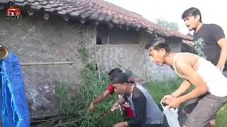 Video lucu WA