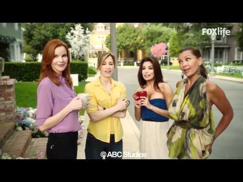 desperate housewives - il nuovo arrivo ottava stagione