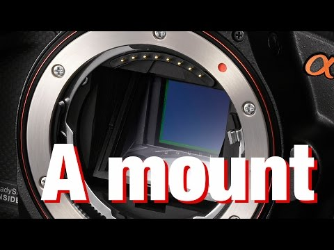 Future of the Sony A Mount