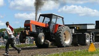 Polskie Ursusy na zawodach w Danii! Tak się prezentowały podczas ciągnięcia ciężarów!
