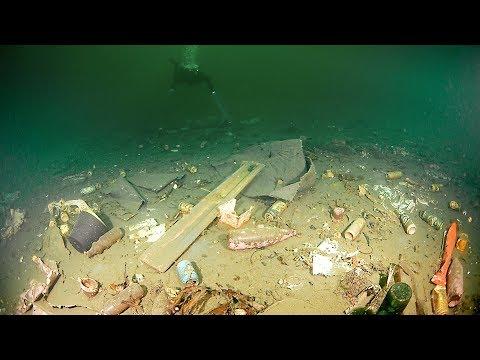 Har laget et «søppelhjem» for dyr i Oslofjorden: - Trist og fascinerende