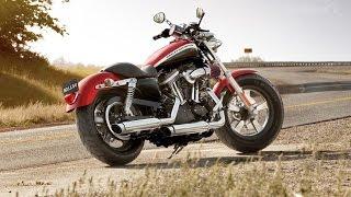 5. Harley Davidson Sportster 1200_ 110th Anniversary