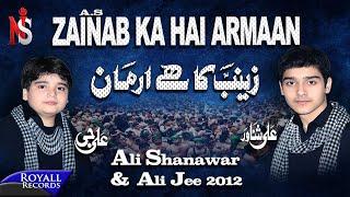 Ali Shanawar&Ali Jee | Zainab Ka Hai Armaan | 2012
