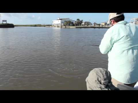 Lone Star Life: Texas Saltwater Fishing – Quick Limit of Reds