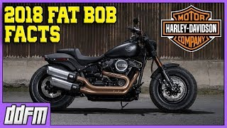 1. 2018 Harley Davidson Fat Bob Specs and Info