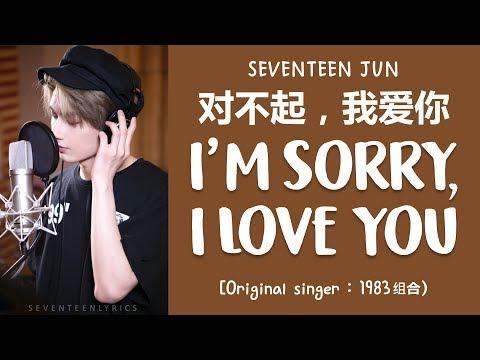 [LYRICS/가사] SEVENTEEN (세븐틴) JUN - 对不起,我爱你 (I'm Sorry, I Love You) [COVER]