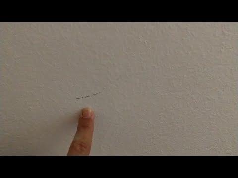 Flecken und Streifen an Wänden entfernen (Einzug, Auszug, Umzug, Renovierung, Streichen vermeiden)