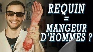 Video LES REQUINS SONT DES MANGEURS D'HOMMES ?! Vrai ou Faux #21 MP3, 3GP, MP4, WEBM, AVI, FLV Juni 2017