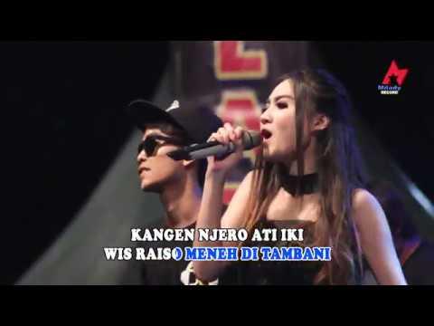Download Lagu Nella Kharisma Ft. Danang Danzt - Kangen Mantan ( Official Music Video ) Music Video