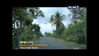 SPOTLITE - Wisata Alam Banyuwangi, Jawa Timur