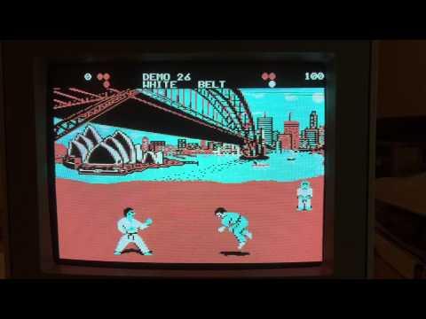 international karate na pc