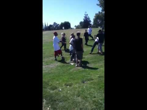 Fight At Ceres Skatepark