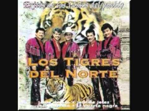 Los Tigres Del Norte José Pérez León