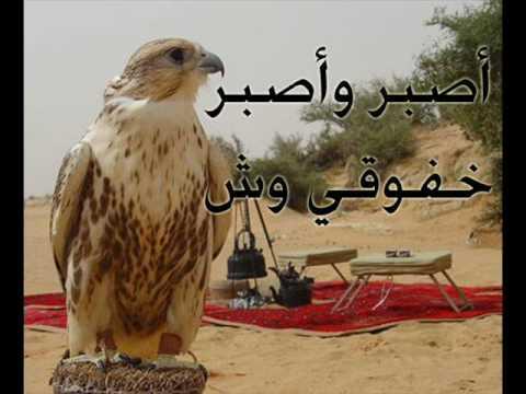 ياطير من ألبوم المقناص 2 – قناص رفحاء