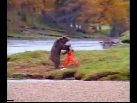Epic Bear Fight