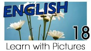 English Plants Vocabulary, Learn English Vocabulary With Pictures