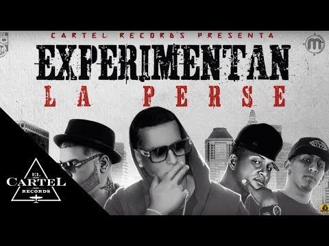 Letra Experimentan La Perse - Daddy Yankee Ft Farruko, Pusho y Más