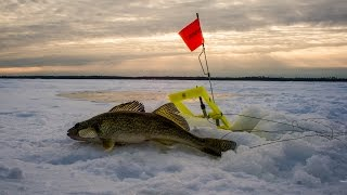 Walleye Ice Fishing Red Lake MN January 8-11, 2015