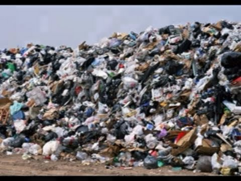 Неделю отказа от пластика краснолучане проводят без ограничений в покупках.