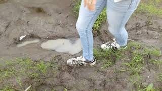 Video Falling and getting stuck in mud with Adidas superstar!!! MP3, 3GP, MP4, WEBM, AVI, FLV Agustus 2019