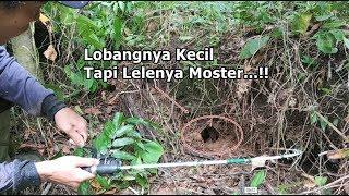 Video Mancing Ikan Lembat !! Dapat Lembat Babon Di Bawah Kayu Roboh MP3, 3GP, MP4, WEBM, AVI, FLV Maret 2019