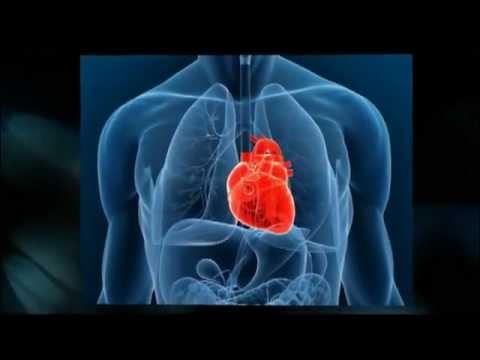 Природное лечение сердечно-сосудистых заболеваний