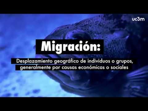 Europa se mueve: migraciones y construcción europea