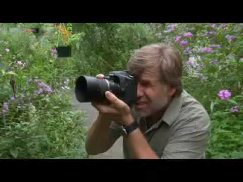 Learn Close-up Photography (Macro) with Pro Photographer Roy Todd