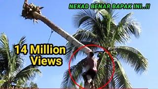 Download Video Sang Ahli Pemotong Pohon Kelapa Hanya Dibayar Rp.100 Ribu? MP3 3GP MP4