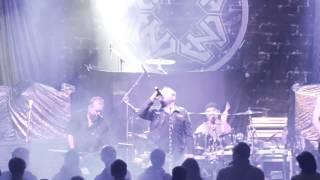 Video D.N.A. -Gambrinus