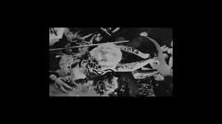 Video Alvarez Perez -Oči Hyeny