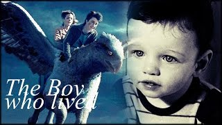 ► Harry Potter - The whole Journey of the Boy who lived [Movie 1-8]