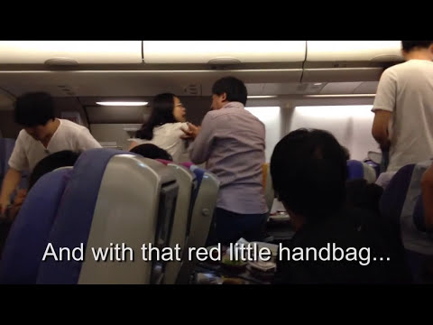Chinese Airplane Fight With Subtitles! (NSFW)