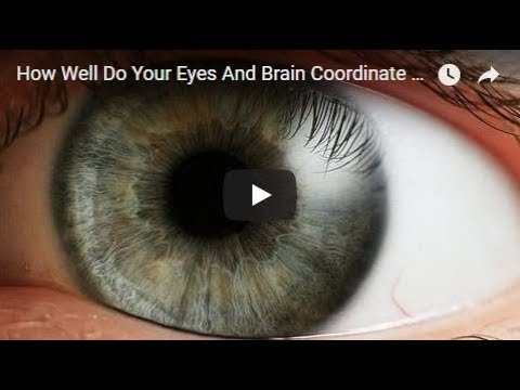 How Well Do Your Eyes And Brain Coordinate ? Test 😜Random Vid😜( David Spates )